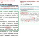 Kovesi a plagiat inclusiv lucrările unei persoane cercetate de DNA