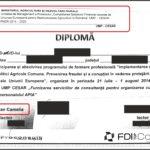 Judecătoarea Camelia Bogdan a mințit CSM